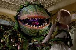 "little shop of horrors is a movie/play/movie about audrey II, a carnivorous plant cared for by a florist assistant seymour who named the audrey II in honor of his true love audrey.  audrey is terrorized by the abusive boyfriend orin but finds the courage to leave--because there's ""suddenly seymour"" the most popular song from this show is ""suddenly seymour"" which i can't get out of my head right now.  karma alert:   audrey II ends up with a nice orin meal."
